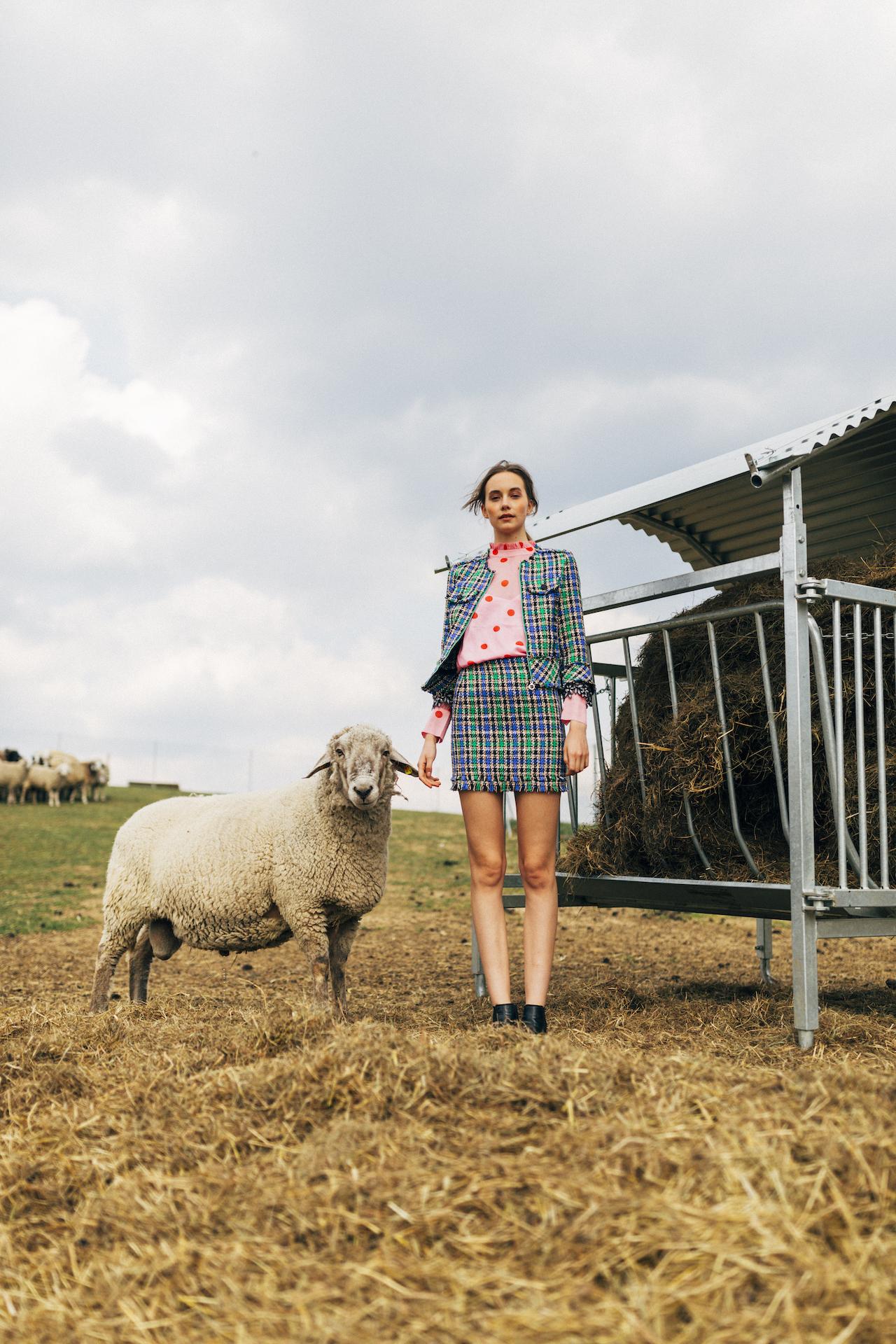 Stella Butz Bellezza Modelling Sheep