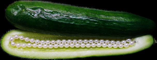 Stella Butz Photography Cucumber Behind